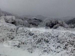 Родопите побеляха, снежната покривка е над 8 сантиметра СНИМКИ