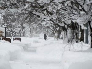 Рекордно количество сняг в САЩ, обявиха извънредно положение