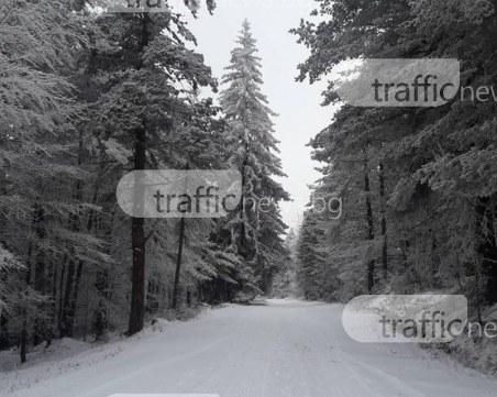 Бяла приказка на 40 км от Пловдив СНИМКИ