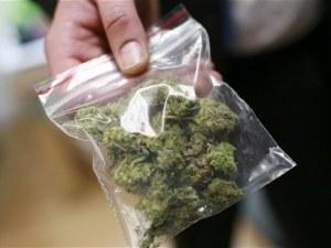 16 топчета марихуана вкараха 18-годишен в ареста
