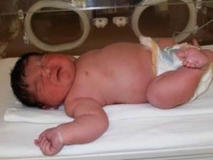 Пловдив държи рекорда за най-тежко бебе ВИДЕО