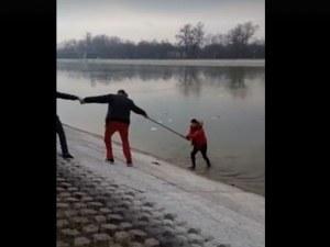 Пловдивчани спасиха момче, паднало в Гребната база ВИДЕО