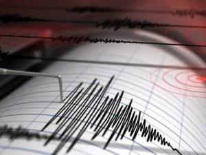 8,2 по Рихтер разлюля Аляска, има опасност от цунами