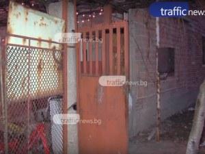 Собственичката на агресивния питбул от Пазарджишко е леля на убитото дете