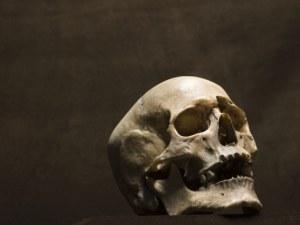 Момиче откри зловеща находка в гардероба си в квартирата - череп