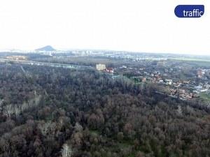 Правят зелено училище с бунгала и атракции в първия пловдивски лесопарк ВИДЕО