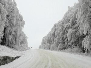 Тежка пътна обстановка край Пловдив! Шофьори, внимавайте в тези участъци ВИДЕО