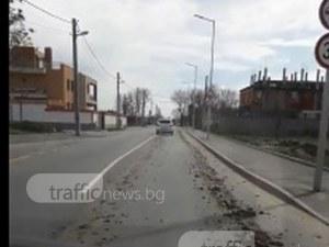 Ул. Остромила - улица или нива? Вие как мислите? ВИДЕО