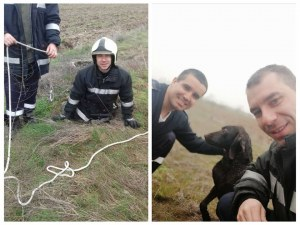 Човечност: Млади пожарникари спасиха куче от сигурна смърт, спуснаха се в 4-метрова шахта