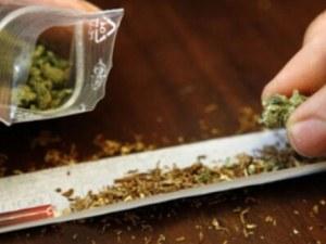 Полицията намери два тайника с 6 кг марихуана в Първомай