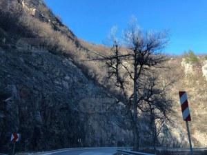 Опасен клон дебне жертви по пътя Пампорово - Пловдив СНИМКИ