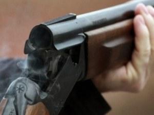 Мъж застреля домашно куче край Пазарджик! Влизало в двора му