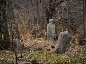 Преобразяват природата на гробищата в Пловдив за 70 хиляди лева