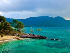 Нови животински видове бяха открити на остров Ява