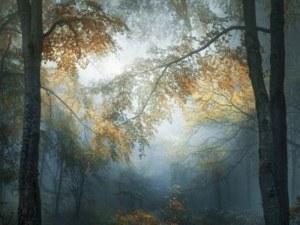 Снимка на горите в Стара планина номер 1 измежду 171 000 на международен конкурс