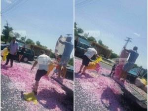 Протест блокира важни шосета до Пловдив, розопроизводители се бунтуват срещу ниските цени