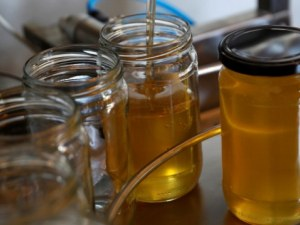 Вместо мед – ядем захарен сироп с прашец