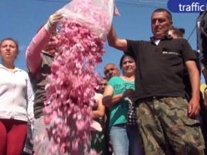 Без минимална изкупна цена на розовия цвят, Порожанов моли дестилериите да осигурят печалба на производителите