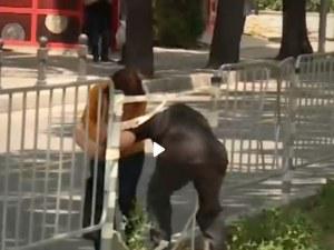 Пловдивчани трошат мантинели на Руски! Защо? ВИДЕО