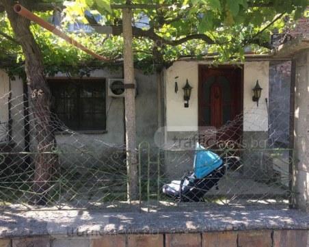 Съсед е спасил нахапано от дого аржентино дете в пловдивско село СНИМКИ+ВИДЕО