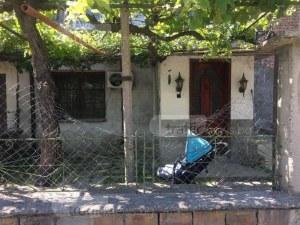 Нахапаното от дого аржентино дете в пловдивско село вече е стабилно