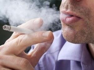Само за седмица в Пловдив: Над 150 проверки за пушене на закрито и само 8 нарушения