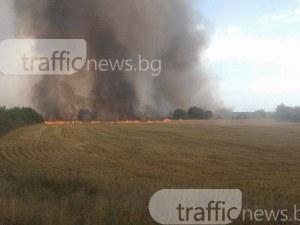 Горят 500 декара, пожарът заплашва пловдивско село СНИМКИ