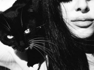 Тест: какво ще разкрие котката за вас
