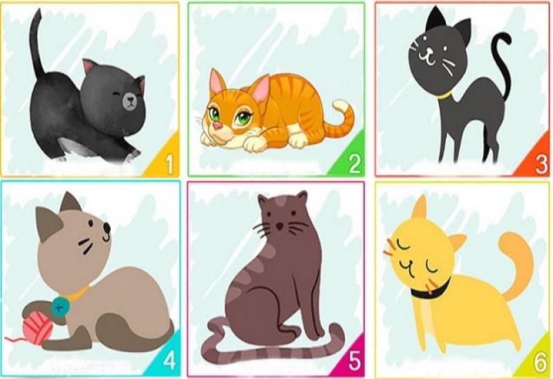 Изберете си котка и вижте какво казва това за вашата личност