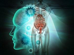 Невероятен пробив: Направиха първата в света триизмерна радиография на човешко тяло