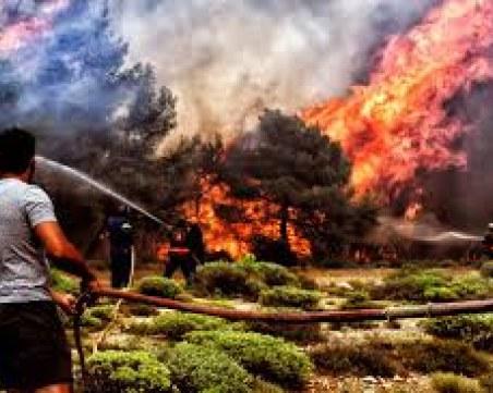 Арестуваха мъж за опустошителните пожари в Атина