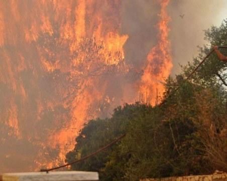 Огромен пожар избухна на гръцкия остров Закинтос СНИМКИ+ВИДЕО