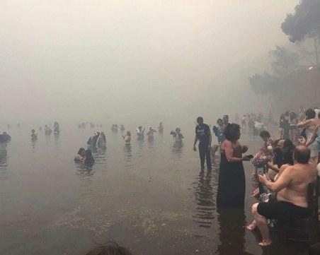 Заподозреният за пожарите в Мати твърдял, че огънят тръгнал от електрически кабел