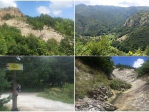 Хайде на разходка в Родопите! Един страхотен маршрут само на 50 км от Пловдив СНИМКИ