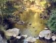 На лов за злато в реките край Пловдив