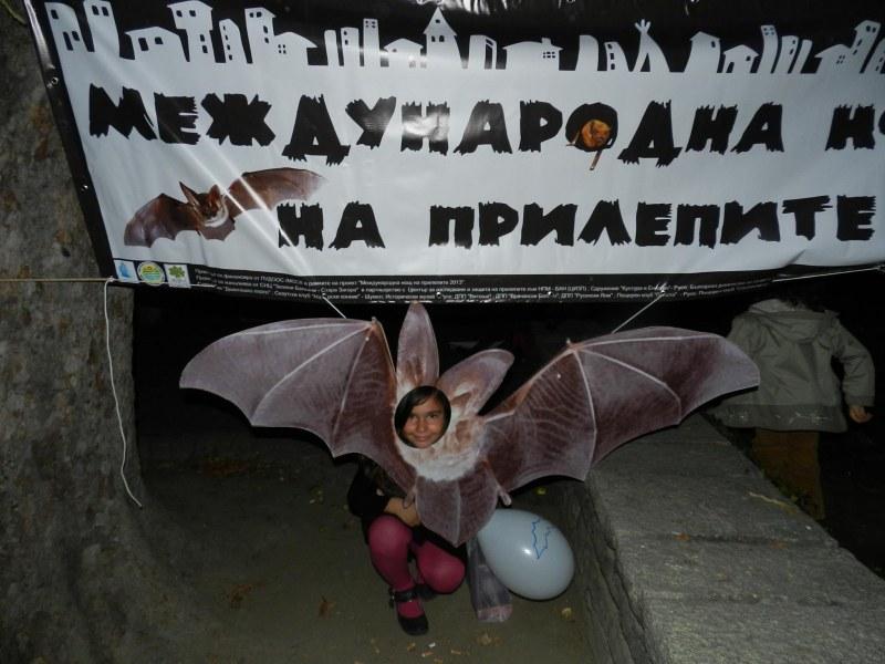 Нощ на прилепите в Пловдив! Малки и големи ще подслушват животните с детектори