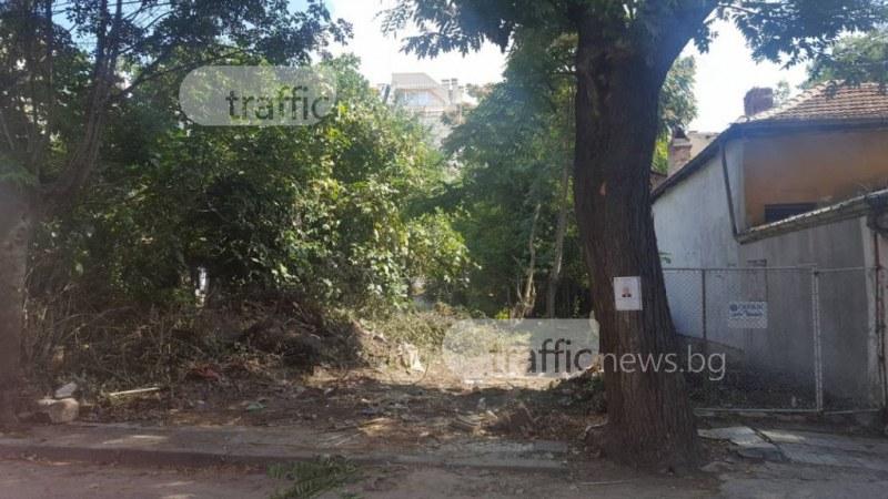 Екшънът в центъра на Пловдив, вдигнал накрак полицията, се оказа люта битка между съседи СНИМКИ