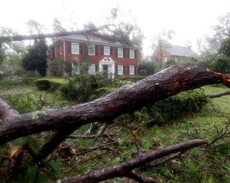 Дърво уби майка и бебе заради урагана Флорънс! СНИМКИ от бедствието