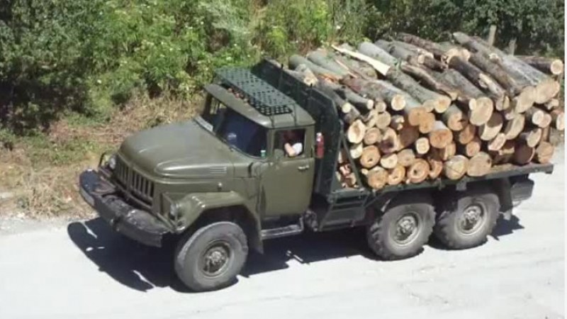 Арестуваха кмет на пазарджишко село, превозвал нелегално дървесина