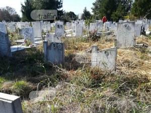 Треволяци и непочистени пътеки тормозят посетителите на Рогошките гробища СНИМКИ