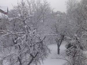 До седмица Острова ще бъде скован от студ и сняг! Рязък спад на температурата!