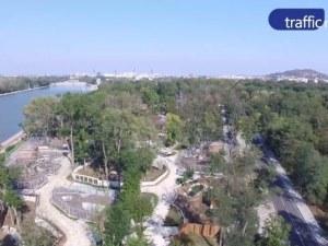 Рестартират строителството на пловдивския зоопарк, но чакат съда за отварянето му