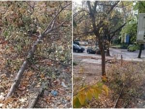 Пловдивчанка: Бях толкова щастлива, че ще махат гаражите, а какво стана? ВИДЕО