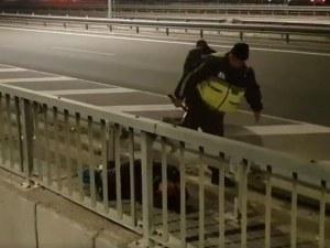 МВР за бития протестиращ: Няма нарушения, не може да се блокират магистрали и главни пътища