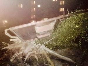 Погром пред сграда в Пловдив след отрязано дърво СНИМКИ