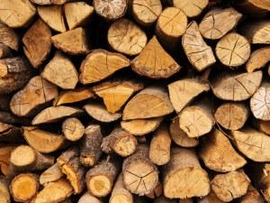 Смолянски горски задържаха над 500 кубика незаконна дървесина