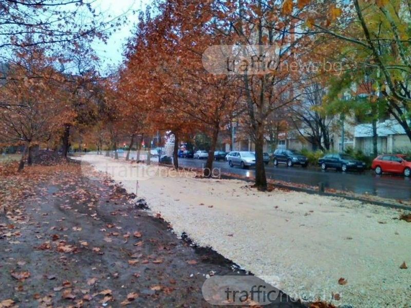 Пловдивчани излизат на протест заради ремонт на булевард, изял част от парк СНИМКИ