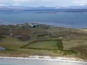 Продават остров, обитаван от пет вида пингвини