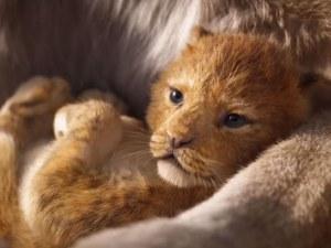 """""""Цар Лъв"""" се възражда на голям екран ВИДЕО"""