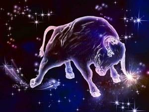 Годишен хороскоп за 2019 година - Телец